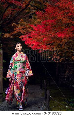 Japanese Girl In Traditional Kimono Dress Walk In Kyoto Old Temple With Red Autumn Background, This