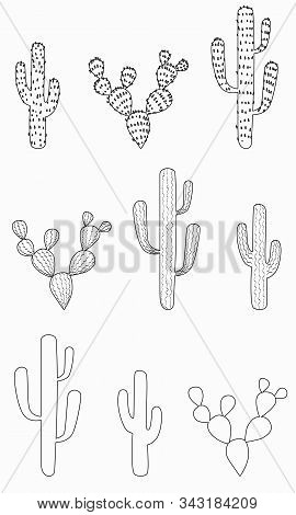 Cactus Set Of Various  Shapes With And Without Thorns. Hand-drawn Outline Succulents Cacti Desert Pl