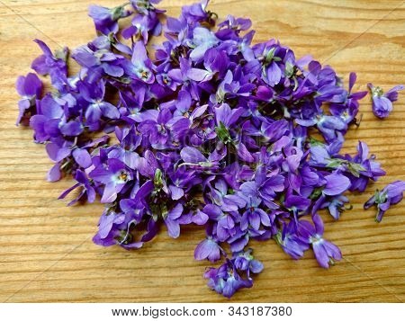 Violets Flowers Heap Pile On Wooden Table. Wild Common Violet Flowers (wood, Sweet, English Or Garde