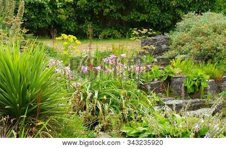Traditional English Garden With Flowers And Plants During Summertime