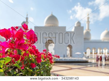 Pink Vibrant Flowers Blooming Near White Mosque