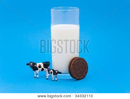 Cow and calf with glass of milk and a cookie on blue background