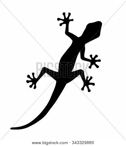Vector Black Gecko Lizard Silhouette Isolated On White Background