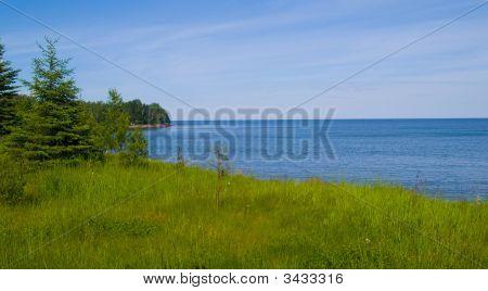 Flood Bay Spring