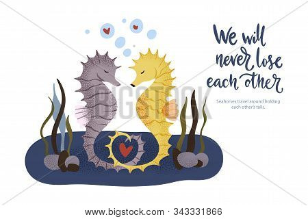 Happy Valentine Day Vector Textured Seahorse Animal Card In A Flat Style With Quote And Real Facts A