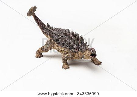 Ankylosaurus Dinosaur On White Background