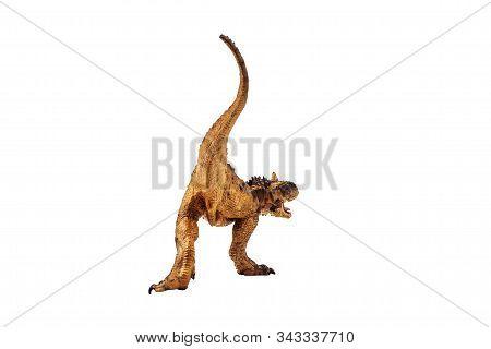 Carnotaurus  Dinosaur On White Background