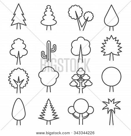 Outlines Tree Simple Icons. Ecology Abstract Minimal Graphical Symbols Of Wood Park Isolated Vector