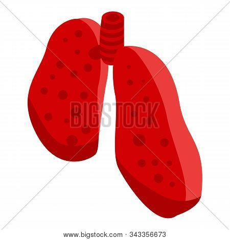 Cutted Section Lungs Icon. Isometric Of Cutted Section Lungs Vector Icon For Web Design Isolated On
