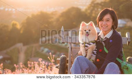 Dog And Women Concept - Young Women Hugging And Kiss Her Lovely Pomeranian Dog In Pink Flower Fields