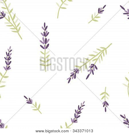 Seamless Pattern With Lavender Flowers. Beautiful Violet Lavender Flowers Retro Background On White.