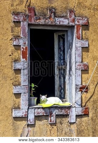 Picturesque Window With A Cat On The Shabby Wall. Portugal