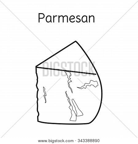 Vector Illustration Of Cheese And Parmesan Icon. Graphic Of Cheese And Appetizer Stock Symbol For We