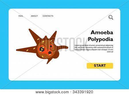 Amoeba Polypodia Flat Icon. Multicolored Vector Illustration Of Unicellurar Organism