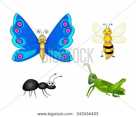 Set Of Colorful Cartoon Insects Isolated On White Background. Butterfly, Bee, Ant, Grasshopper. Flat