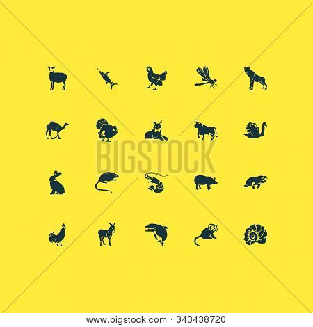 Zoo Icons Set With Sheep, Shell, Camel And Other Wildcat Elements. Isolated Vector Illustration Zoo