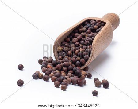 Roveja Bean Pisum Sativum
