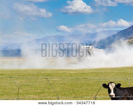 Kuh Uhr LKW gelten Dünger auf Weide-Feld