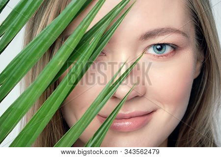 Natural Organic Skin Care, The Concept Of Harmony With Nature, Green Long Fern Leaves Grass Near The