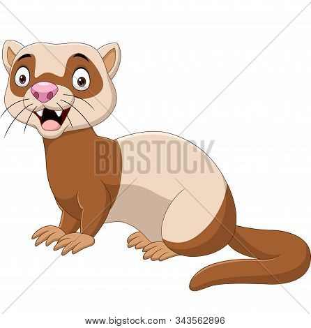 Vector Illustration Of Cartoon Funny Ferret Isolated On The White Background