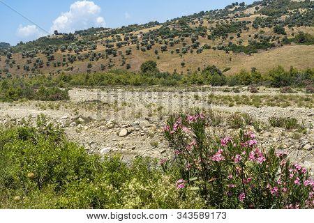 The Valley Of Ferro River, At Summer, Near Oriolo, Cosenza, Calabria, Italy