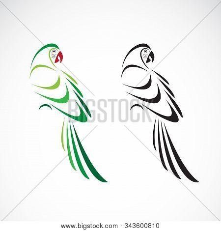 Vector Of A Parrot Design On White Background. Bird Icon. Wild Animals. Parrot Icon Or Logo. Easy Ed