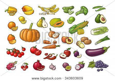 Set Vegetables And Fruits. Vector Color Vintage Engraving