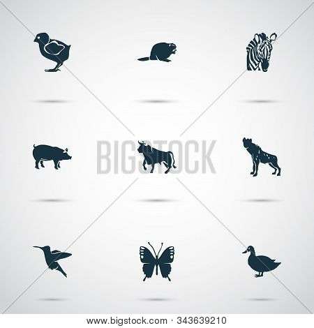 Fauna Icons Set With Bull, Hyena, Zebra And Other Mallard Elements. Isolated Vector Illustration Fau