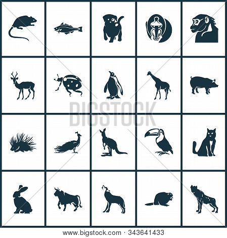 Animal Icons Set With Puppy, Kangaroo, Wolf And Other Codfish Elements. Isolated Vector Illustration