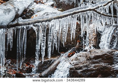 Icicles On A Branch On A Background Of A Mountain River. Icicles In Winter. Icicles Frost Scene. Pla