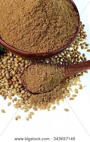 Coriander Seeds, Fresh Coriander And Powdered Coriander Isolated On White Background.