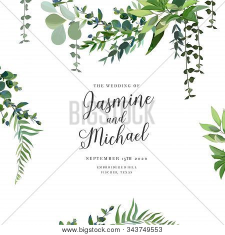 Herbal Vector Frame. Hand Painted Plants, Branches, Leaves On White Background. Greenery Botanical W