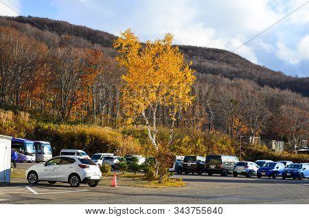Autumn Scenery Of Aomori, Japan