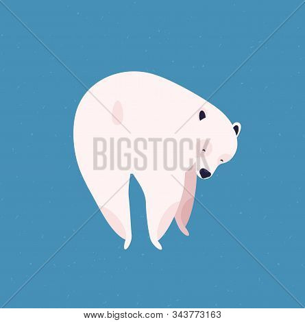 Polar Bear Flat Vector Illustration. Huge Arctic Animal Back View. Cute Cartoon White Fur Cub Isolat