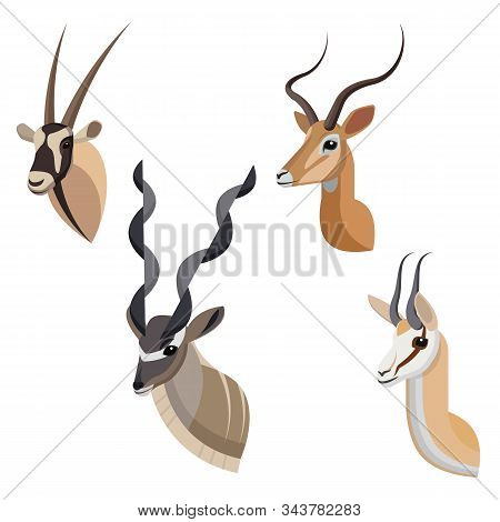 African Antelope Or Gazelle Portrait Set Made In Unique Simple Cartoon Style. Heads Of Gemsbok, Grea