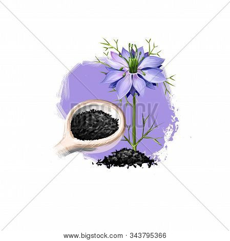 Kala Jeera - Purple Fleban Ayurvedic Herb Digital Art Illustration With Text Isolated On White. Heal