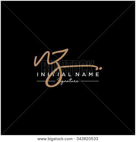 Letter Initial Nz Signature Logo Template Vector