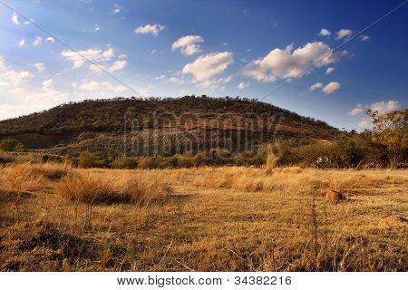 Defaced Mountain