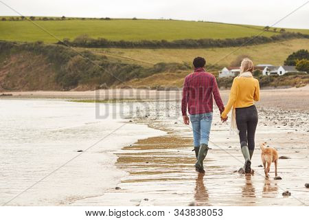 Rear View Of Loving Couple With Pet Dog Holding Hands Walking Along Beach Shoreline