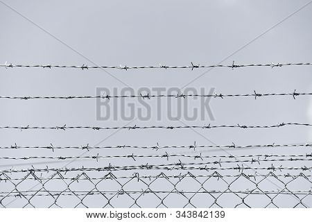 Iron Barbed Wire Fence.barbwire In Security Forbidden To Entry,prison,military Or Private Area.