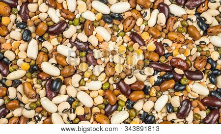 Beans Of Bean. Background Of Many Grains Of Dried Beans. Brown Beans Texture. Food Background. Close