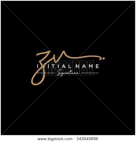 Letter Initial Zv Signature Logo Template Vector