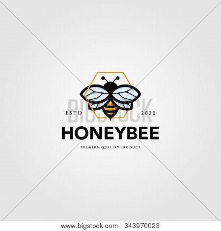 Bumblebee Mascot Logo Hexagon Symbol Vector Illustration Design