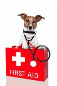 dog with a red first aid kit poster