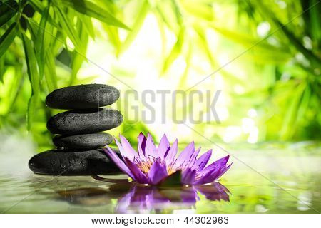 Spa still life with lotus and zen stone on water,bamboo background.