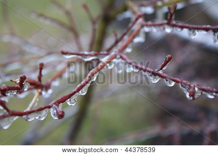 Ice Droplets