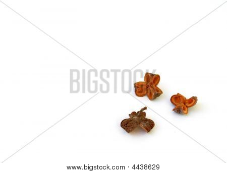 Close Up Shot Of  Dried Fruit Against White Background