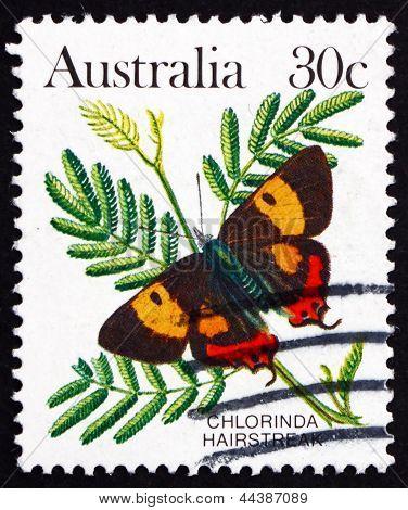 Postage Stamp Australia 1983 Chlorinda Hairstreak, Butterfly
