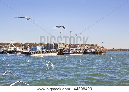 So Crowded At Bet Dwarka Quayside