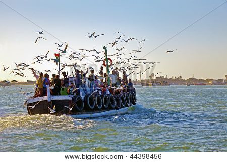 Gulls Hitching A Ride To Mainland